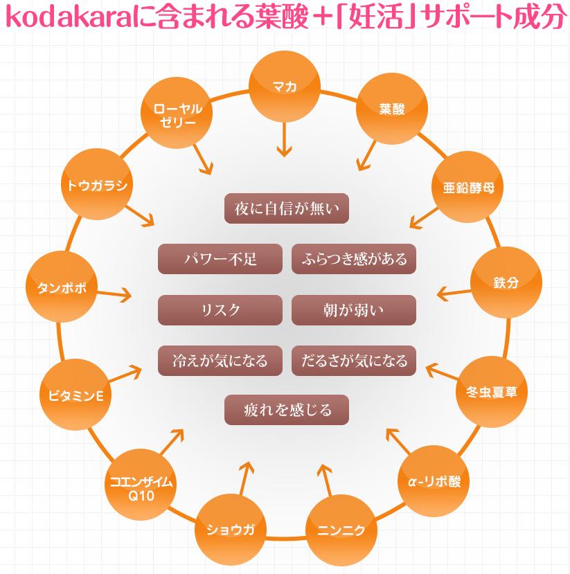 kodakara成分
