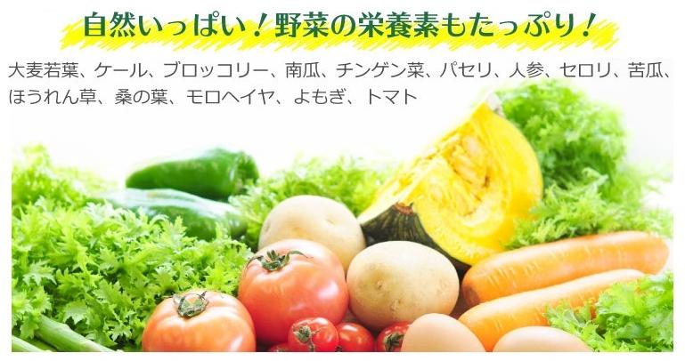 美人通販の葉酸野菜